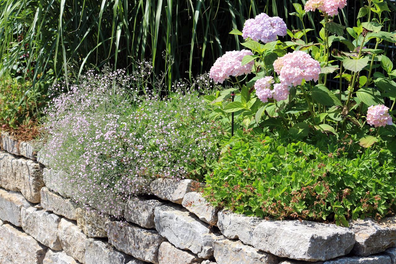 Gartenpflege mit Liebe zum Detail.