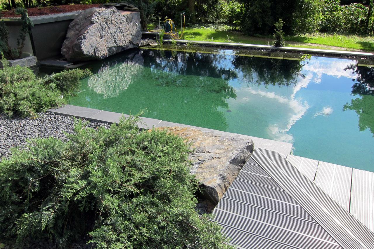 Schwimmteich in Bad Staffelstein-Kümmersreuth