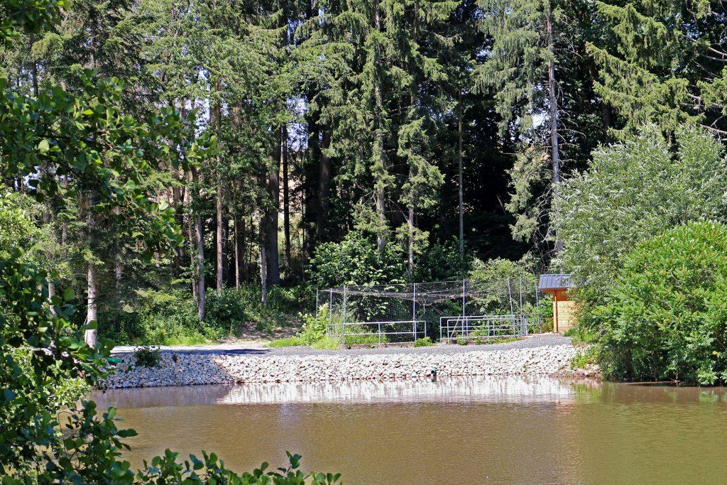 Sanierung Fischweiher im Raum Lichtenfels.
