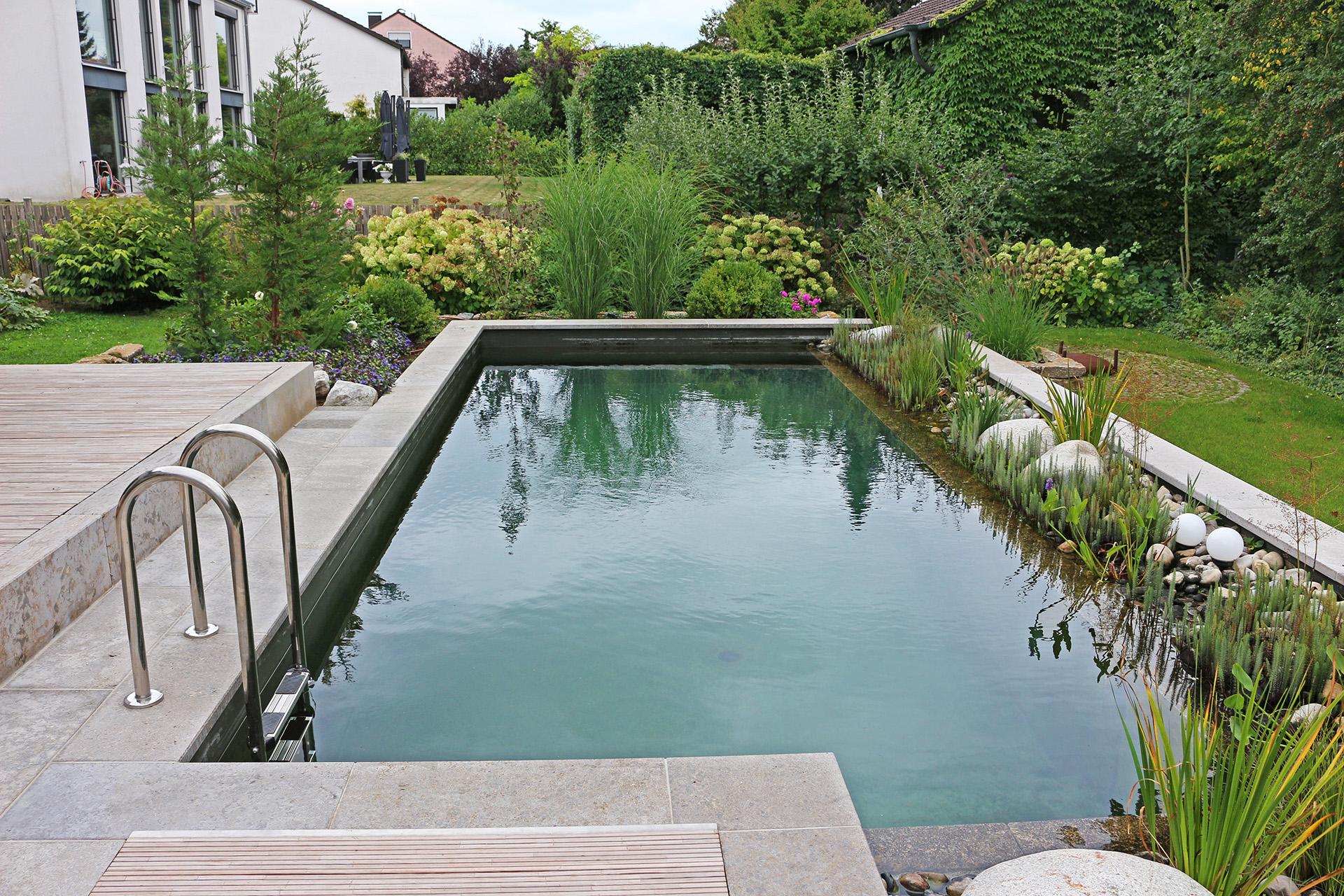 Teich und Pool